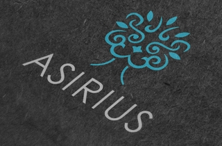 development of logo for financial organization. | ASIRIUS Logo